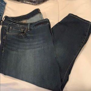 New torrid jeans